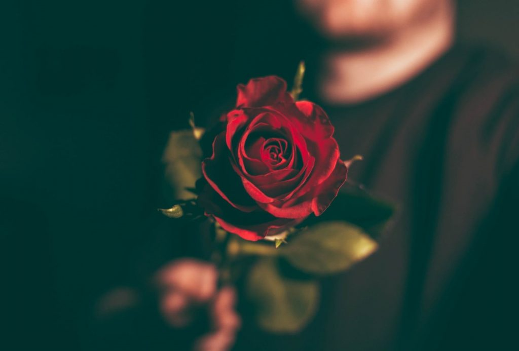 How to have a special Valentine's Day - man holding a rose