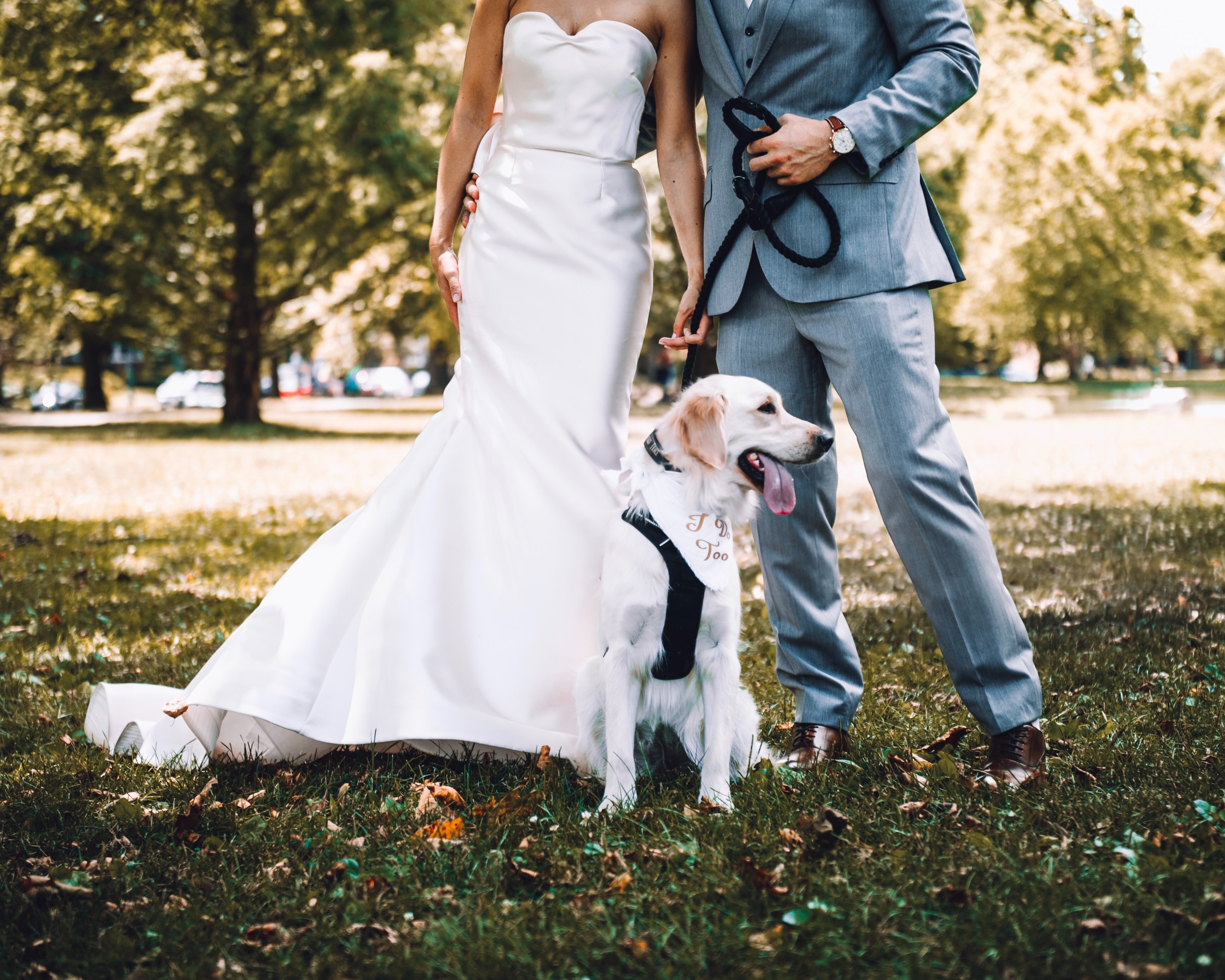 Best Wedding Dates - bride and groom include their dog in wedding